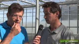 #1058 Neue Minigurken und Snackgurken - mit Karl Ploberger