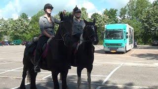 Paardenelfstedentocht brengt ruim 2000 Euro op