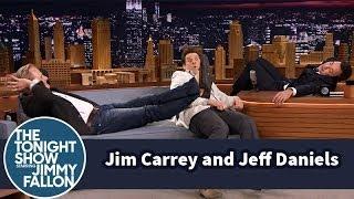 Jim Carrey and Jeff Daniels Catch a Nap