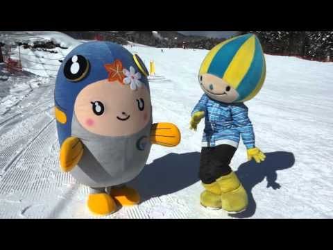 白銀の世界を滑り抜けろ!スキー場でソリに挑戦!編