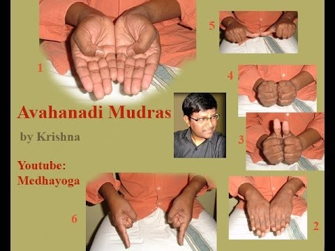 srividya - Sri Vidya Avahana Mudras , Vandani Mudra , Dhenu Mudra and Sarva yoni Mudra. These Mudras are used to invoke the Goddess while doing Prana prathista. Request...