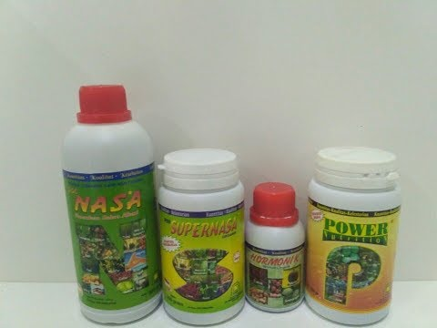 The Best Organic Fertilizer for Grape Plants / PT.Natural Nusantara / +6283840740383