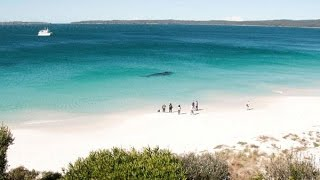 Jervis Bay Australia  city photos : Jervis Bay. One of Australia's most beautiful beaches