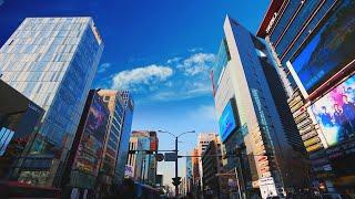 2020 강남구 주요사업 성과 동영상