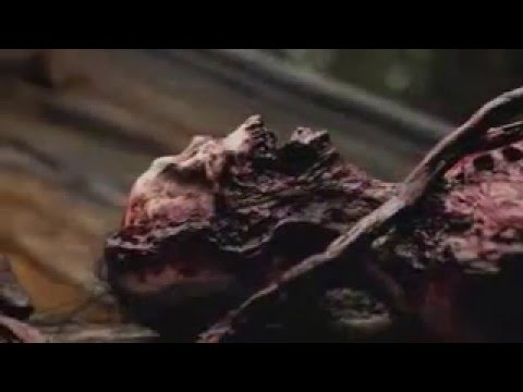 PLAYING WITH DOLLS: BLOODLUST Trailer Horror Movie