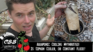 Hi all.It was a hot day, so I thought I'd do a bit of testing, and find out which was hotter or cooler, siphon bed, or constant flood?Check out the video to find the results