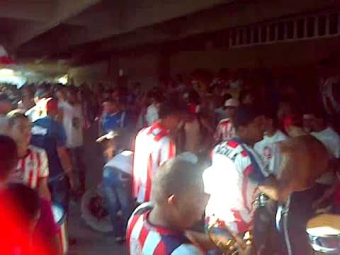 LA BANDA DEL TIBURON 2014 LBK-FRBS-BC - Frente Rojiblanco Sur - Junior de Barranquilla