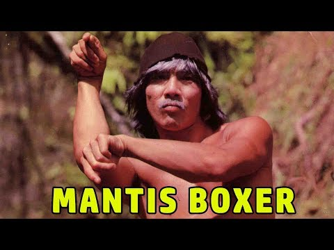 Wu Tang Collection - Mantis Boxer