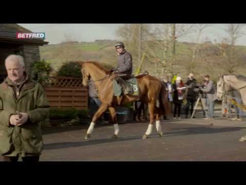 Willie Mullins On Melon