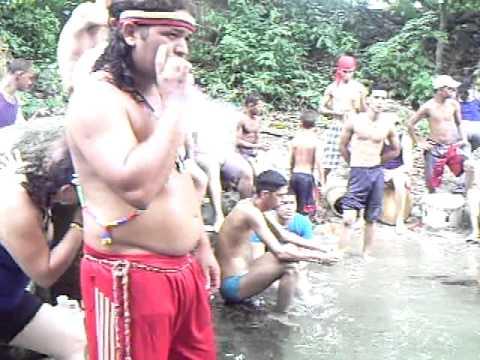 Capino guaicaipuro - Caño blanco