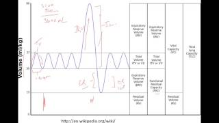Lung Volumes And Basic Spirometry