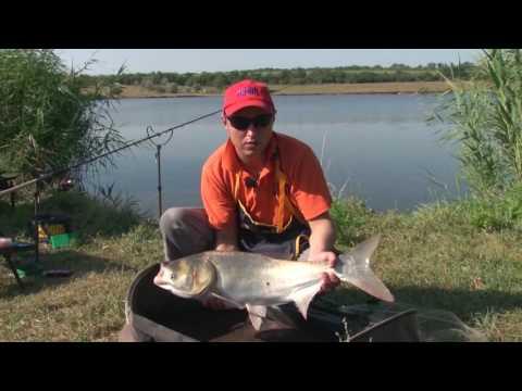 видео рыбалка на фидер в днепропетровске