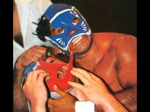 Image result for Blue Panther Love Machine