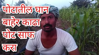 Video Potatil ghan baher kadha ,Pot saf karanyacha sopa upay,pet saf karneke upay ,kabz,Ayurvedic treatmen MP3, 3GP, MP4, WEBM, AVI, FLV Agustus 2018