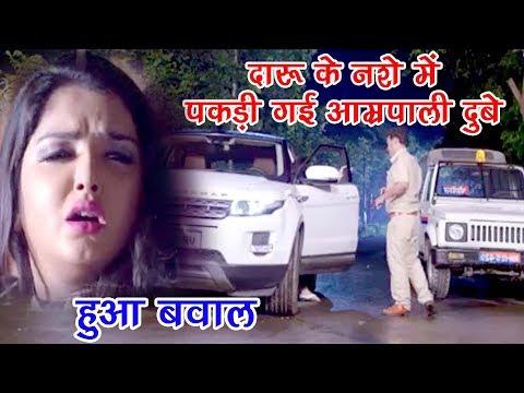 Video Aamrapali Dubey OVER DRINK - दारू के नशे में पकड़ी गई आम्रपाली दुबे - Comedy Scene From Bhojpuri Film download in MP3, 3GP, MP4, WEBM, AVI, FLV January 2017