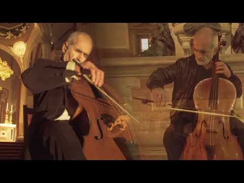 Bach in Bologna // Cello Suite No. 2, BWV 1008: III. Courante by Mauro Valli