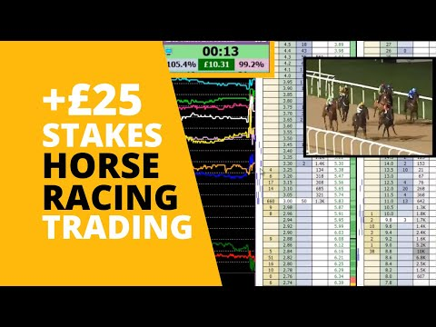 Horse Racing Trading on Betfair – Small Stakes