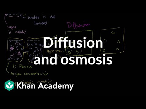 Biology: Cells and cell division
