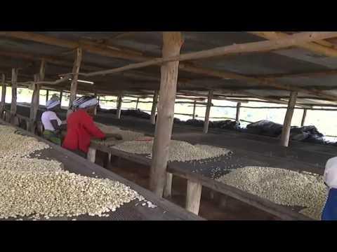 Marketing innovation to boost Rwandan private sector
