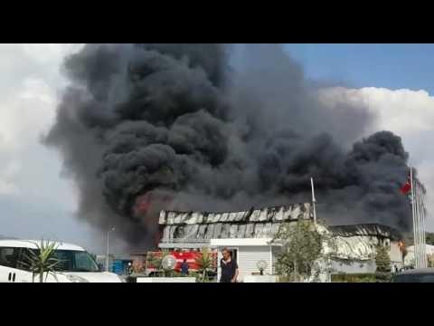 Su ürünleri fabrikasında yangın