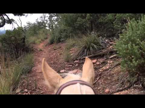 Payson trail ride part one