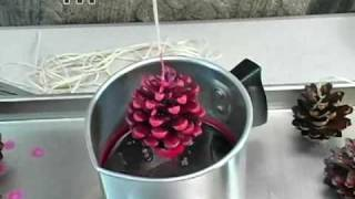 How to: Pine Cone Fire Starters - YouTube