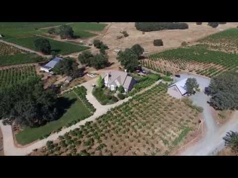 shenandoah valley vineyard for sale