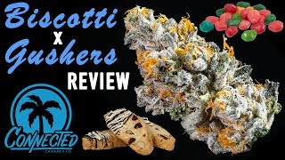 BISCOTTI x GUSHERS - Strain Review by The Cannabis Connoisseur Connection 420