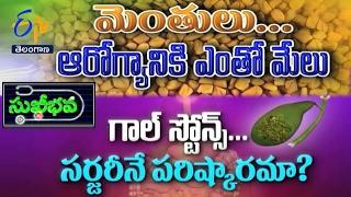 Sukhibhava | 15th February  2017 | Full Episode | ETV Telangana