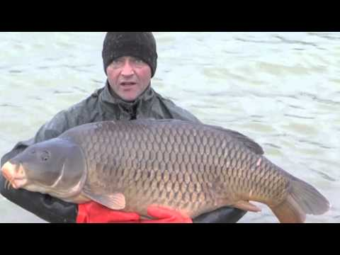 Jonchery Stocks 2 x 50lb Carp, Jan 2014