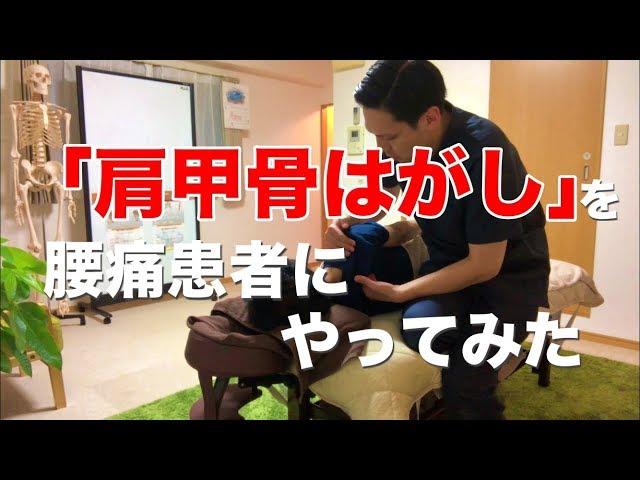 【実録】肩甲骨はがしを腰痛患者やってみた。高槻 腰痛