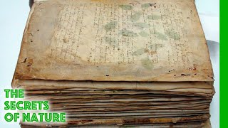 Video The Voynich Code - The Worlds Most Mysterious Manuscript - The Secrets of Nature MP3, 3GP, MP4, WEBM, AVI, FLV September 2019