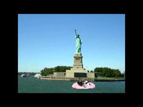 Dog and Kitty Travel Around The World Music Video
