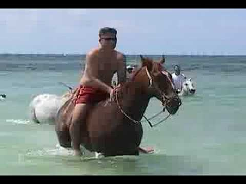 Riding Horses in Cancun