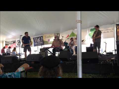 Johnny Neel Band Jammin at Hippie Jack's 2016 Music Festival
