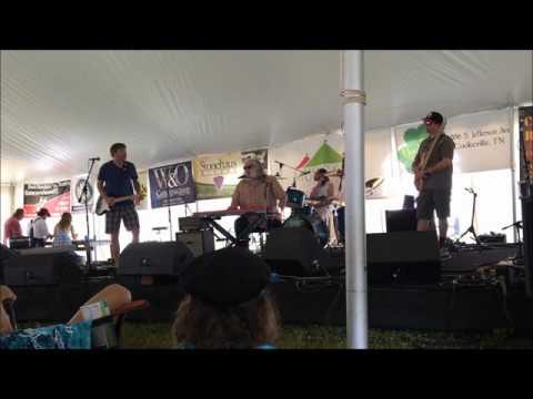 Johnny Neel Band Jammin at Hippie Jack's 2016 Music Festival
