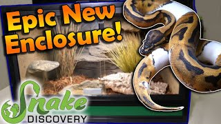 New SNAKE DISCOVERY Enclosure! How to Built and Decorate it! by Snake Discovery