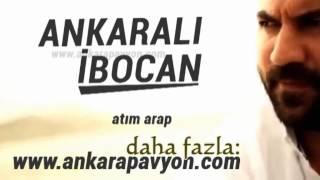 Ankaralı İbocan   Atım Arap