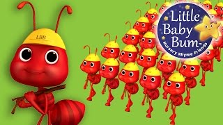 Ants Go Marching | Nursery Rhymes | By LittleBabyBum! | ABCs and 123s
