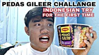 INDONESIAN TRY MAGGI PEDAS GILERR! | MEE TERPEDAS BUATAN MALAYSIA