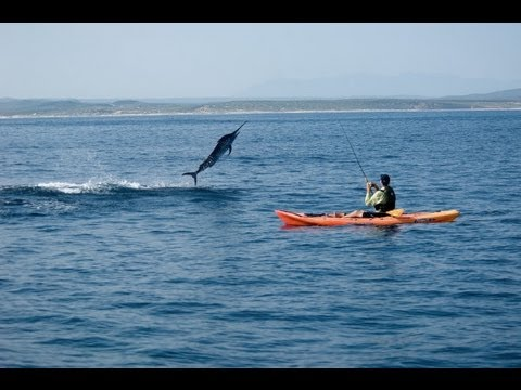 Black Marlin fishing from a Kayak!