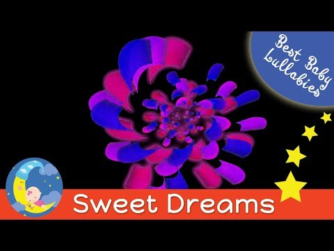 Video 2 Hours of Gentle Lullabies For Babies Baby Sleep Music Put Children To Sleep Gentle Nursery Rhymes download in MP3, 3GP, MP4, WEBM, AVI, FLV January 2017