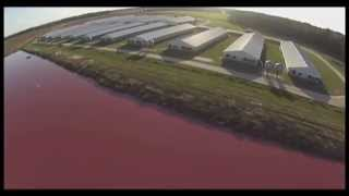 Smithfield (NC) United States  city photos gallery : Spy Drones Expose Smithfield Foods Factory Farms