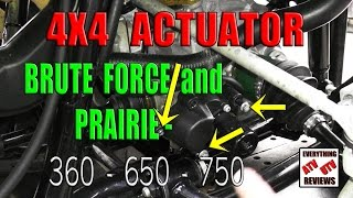 9. How to remove the 4X4 ACTUATOR motor and gear assembly: Brute Force or Prairie: 360 650 750