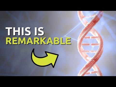 Wonder of DNA 4/10/14 Designer Conference Dr. Georgia Purdom