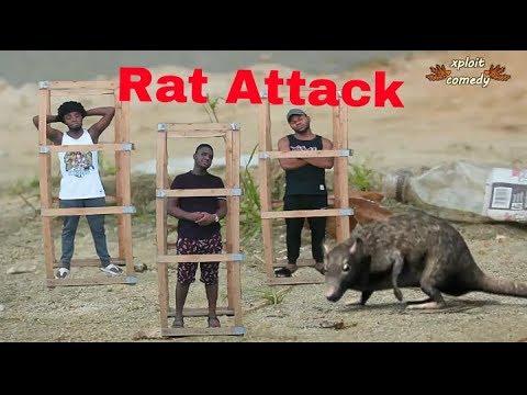 The Rise of Rats (Xploit Comedy) (Short Film)