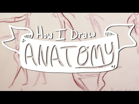 How I Draw ANATOMY #2: Line Of Action