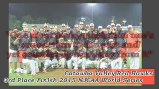 6. 2016 CVCC Red Hawks Baseball