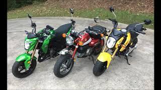 10. 2019 Honda Monkey 125  Side by Side with Grom & Kawasaki Z125 Pro