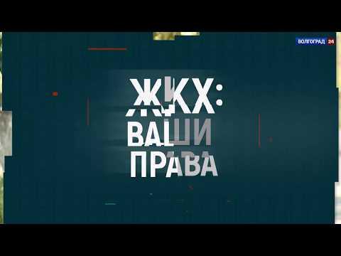 Плесень в доме. Выпуск 22.08.18.